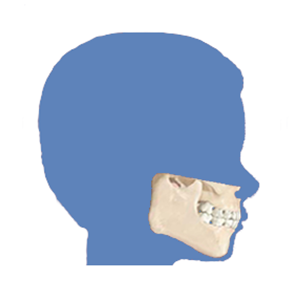 jaw surgery clinic